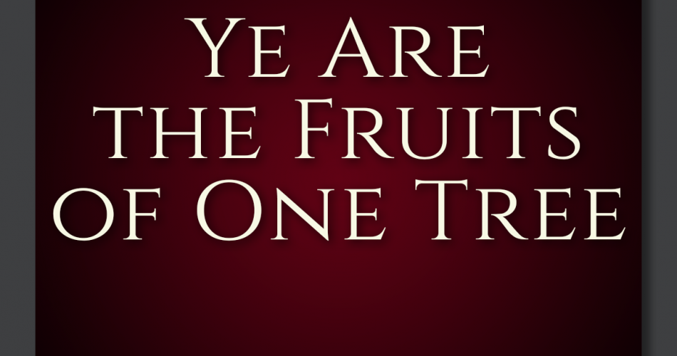 28. Ye Are The Fruits Of One Tree